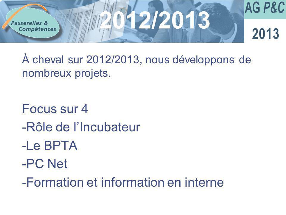 Sommaire À cheval sur 2012/2013, nous développons de nombreux projets. Focus sur 4 -Rôle de lIncubateur -Le BPTA -PC Net -Formation et information en