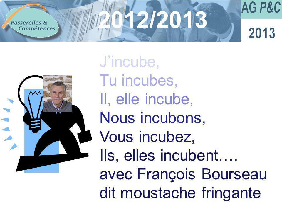 Sommaire 2012/2013 Jincube, Tu incubes, Il, elle incube, Nous incubons, Vous incubez, Ils, elles incubent…. avec François Bourseau dit moustache fring