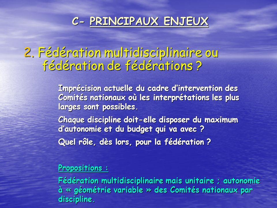 2. Fédération multidisciplinaire ou fédération de fédérations ? C- PRINCIPAUX ENJEUX Imprécision actuelle du cadre dintervention des Comités nationaux