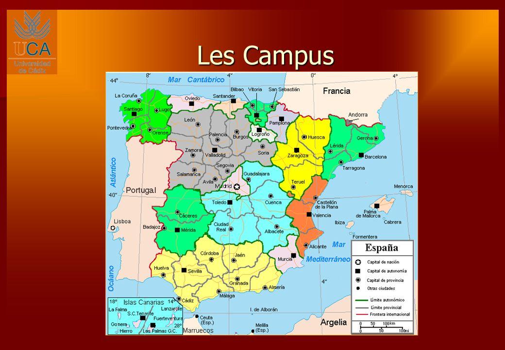 LUCA- Pionnière de la Coopération avec le Sud Méditerranéen LUniversité de Cadix est pour la troisième année consécutive la première université espagnole au niveau du nombre de projets de coopération interuniversitaire (PCI), financés par lAgence Espagnole de Coopération Internationale pour le Développement.