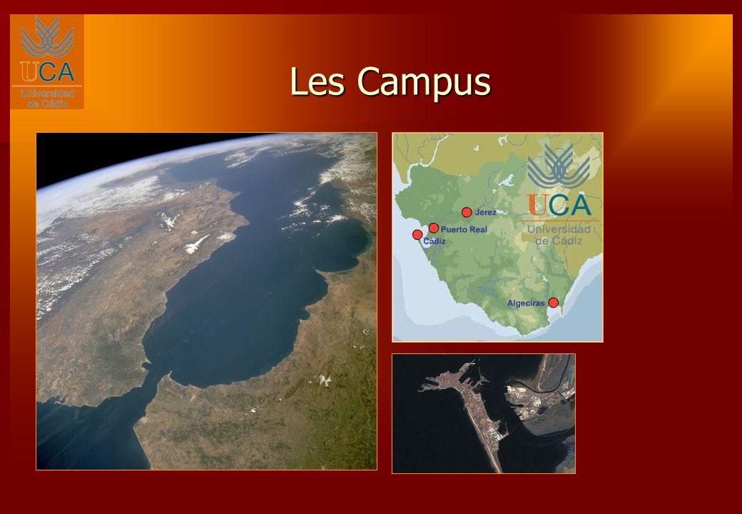 Les installations de l université sont réparties sur plusieurs campus : 1.Le campus de Cadix: accueille la plupart des facultés et des écoles de l Université de Cadix, notamment la Faculté de Médecine et l École Supérieure d Ingénierie.