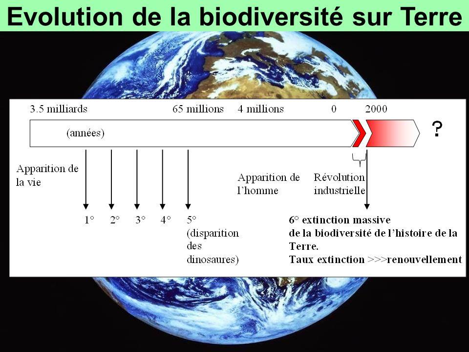 Evolution de la biodiversité sur Terre