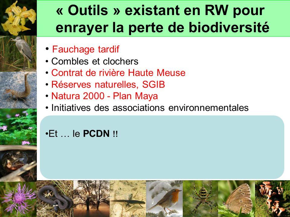 « Outils » existant en RW pour enrayer la perte de biodiversité Fauchage tardif Combles et clochers Contrat de rivière Haute Meuse Réserves naturelles