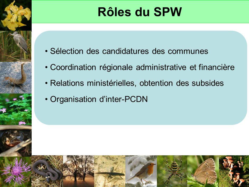 Rôles du SPW Sélection des candidatures des communes Coordination régionale administrative et financière Relations ministérielles, obtention des subsi