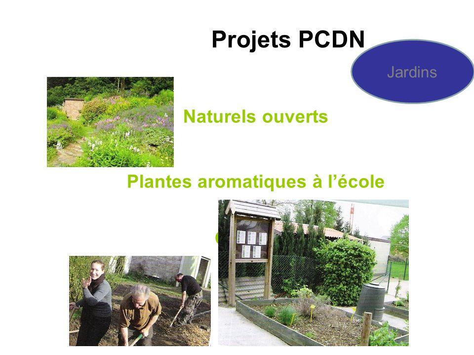 Naturels ouverts Plantes aromatiques à lécole Collectifs Projets PCDN Jardins