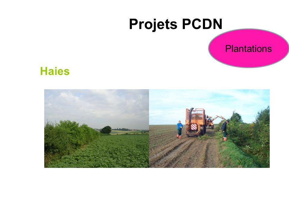 Haies Projets PCDN Plantations