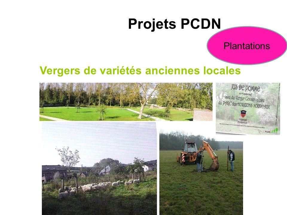 Vergers de variétés anciennes locales Projets PCDN Plantations