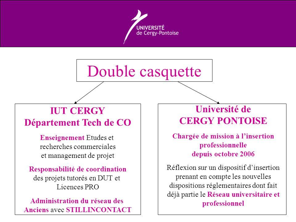 Double casquette IUT CERGY Département Tech de CO Enseignement Etudes et recherches commerciales et management de projet Responsabilité de coordinatio