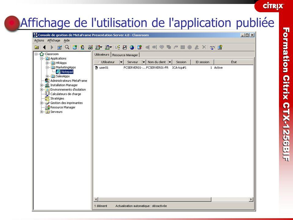 Formation Citrix CTX-1256BIF Affichage de l'utilisation de l'application publiée
