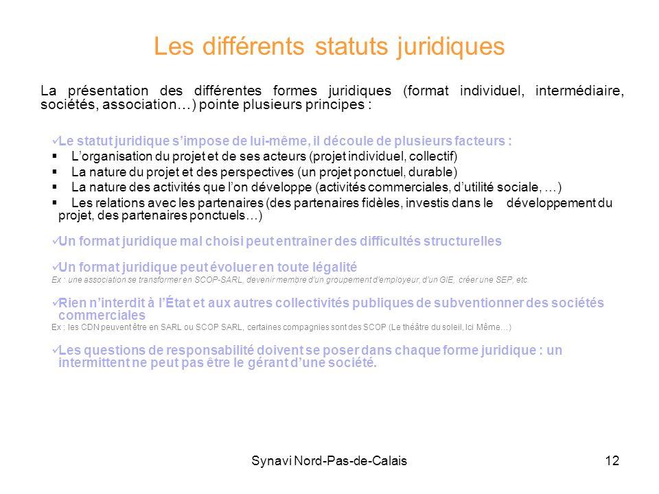 Synavi Nord-Pas-de-Calais12 Les différents statuts juridiques Le statut juridique simpose de lui-même, il découle de plusieurs facteurs : Lorganisatio