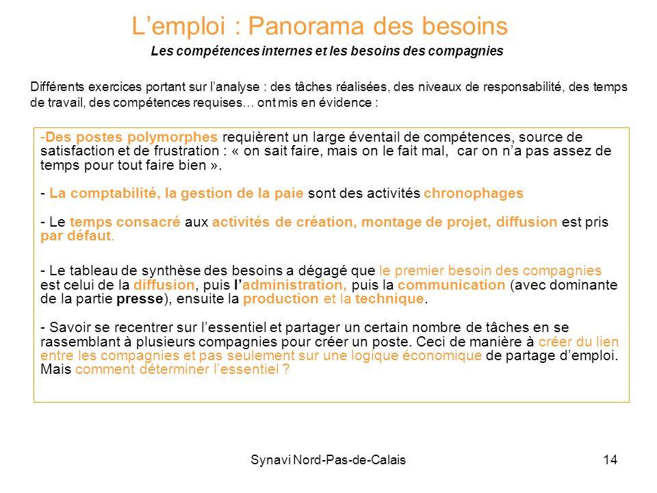 Synavi Nord-Pas-de-Calais14 Lemploi : Panorama des besoins Les compétences internes et les besoins des compagnies -Des postes polymorphes requièrent u