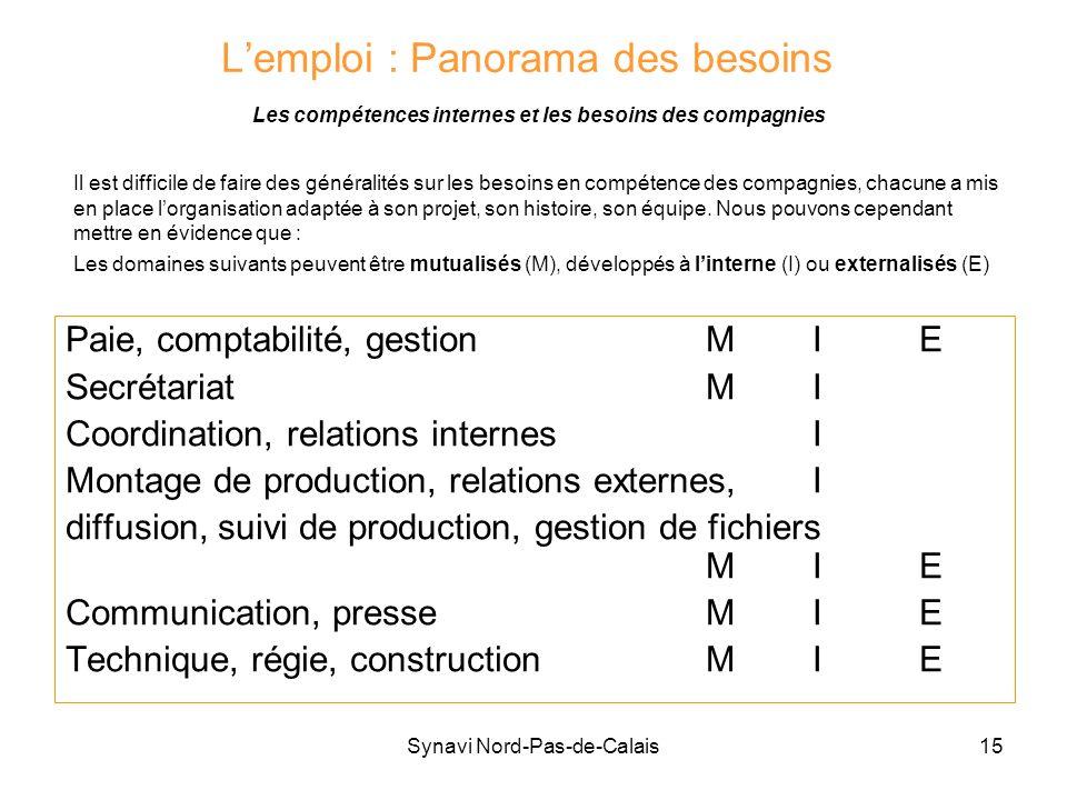 Synavi Nord-Pas-de-Calais15 Lemploi : Panorama des besoins Les compétences internes et les besoins des compagnies Paie, comptabilité, gestionMIE Secré