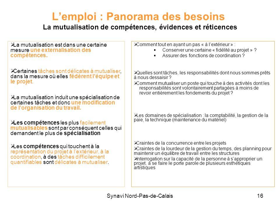 Synavi Nord-Pas-de-Calais16 Lemploi : Panorama des besoins La mutualisation de compétences, évidences et réticences La mutualisation est dans une cert