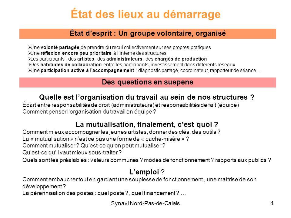Synavi Nord-Pas-de-Calais4 État des lieux au démarrage Une volonté partagée de prendre du recul collectivement sur ses propres pratiques Une réflexion