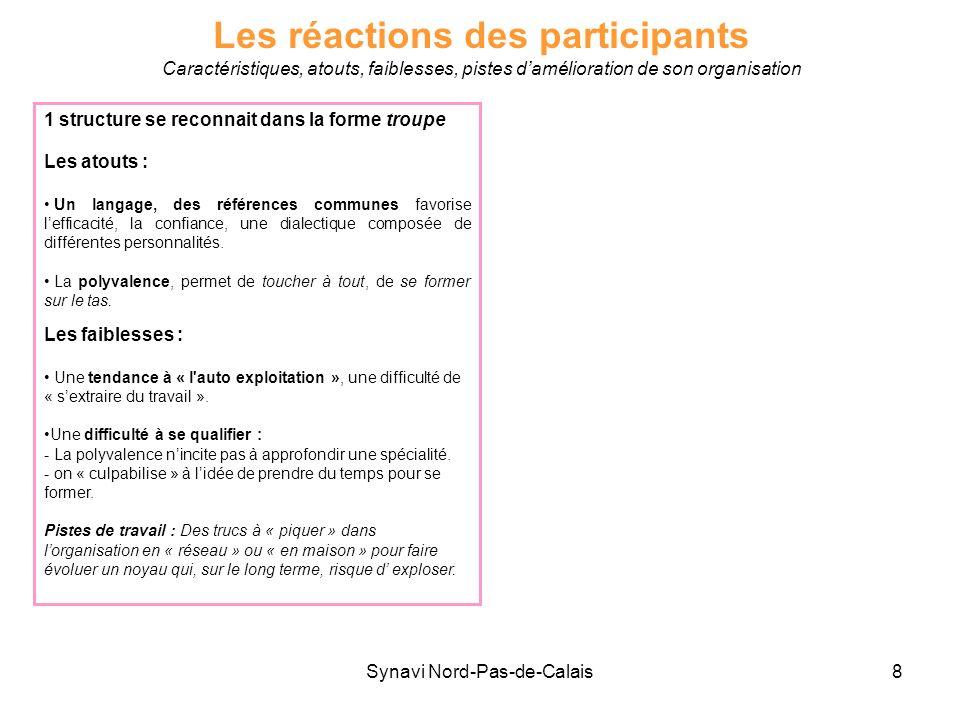 Synavi Nord-Pas-de-Calais8 Les réactions des participants Caractéristiques, atouts, faiblesses, pistes damélioration de son organisation 1 structure s