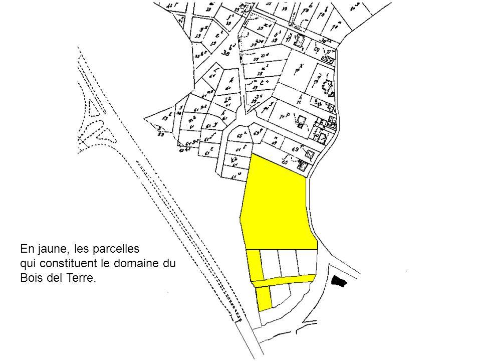 En jaune, les parcelles qui constituent le domaine du Bois del Terre.