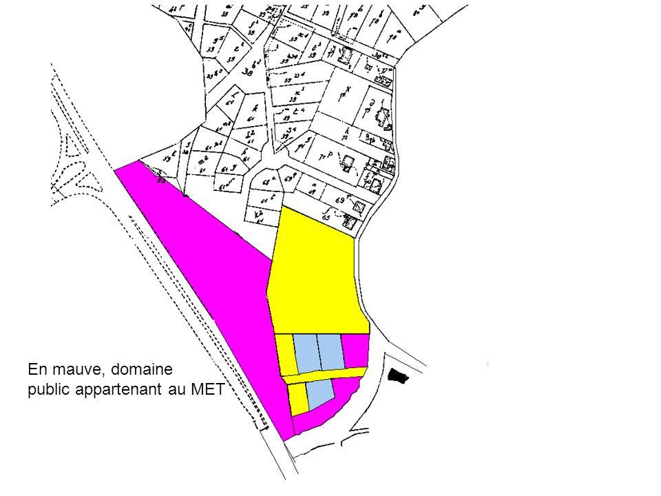 En mauve, domaine public appartenant au MET