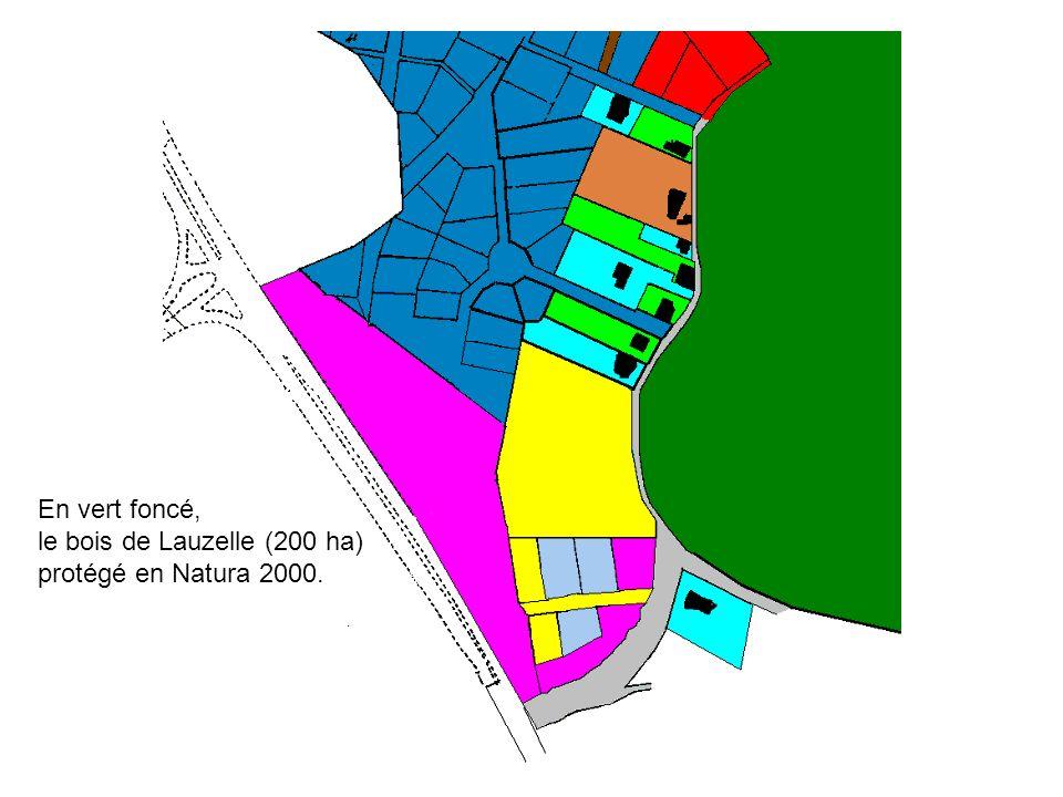 En vert foncé, le bois de Lauzelle (200 ha) protégé en Natura 2000.