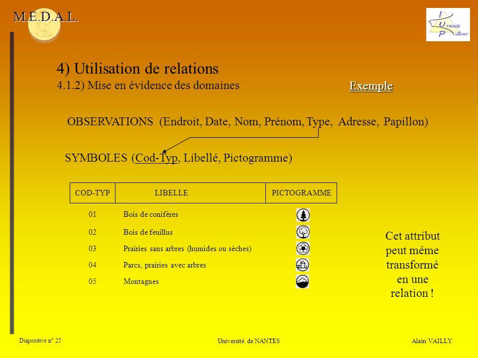 4) Utilisation de relations 4.1.2) Mise en évidence des domaines Alain VAILLY Diapositive n° 25 Université de NANTES M.E.D.A.L. SYMBOLES (Cod-Typ, Lib