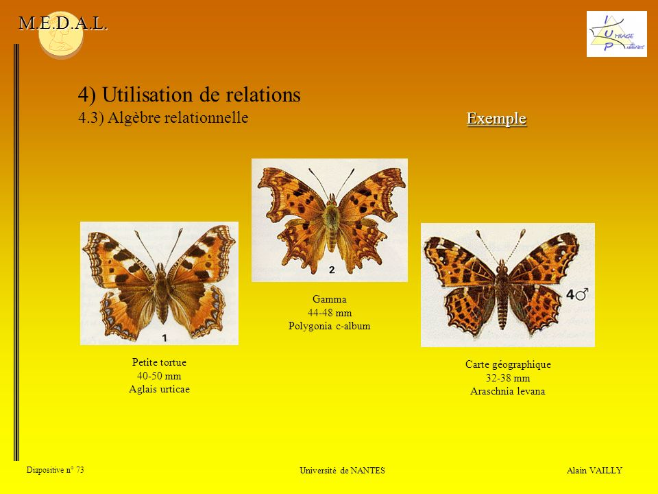4) Utilisation de relations 4.3) Algèbre relationnelle Alain VAILLY Diapositive n° 73 Université de NANTES M.E.D.A.L. Exemple Petite tortue 40-50 mm A