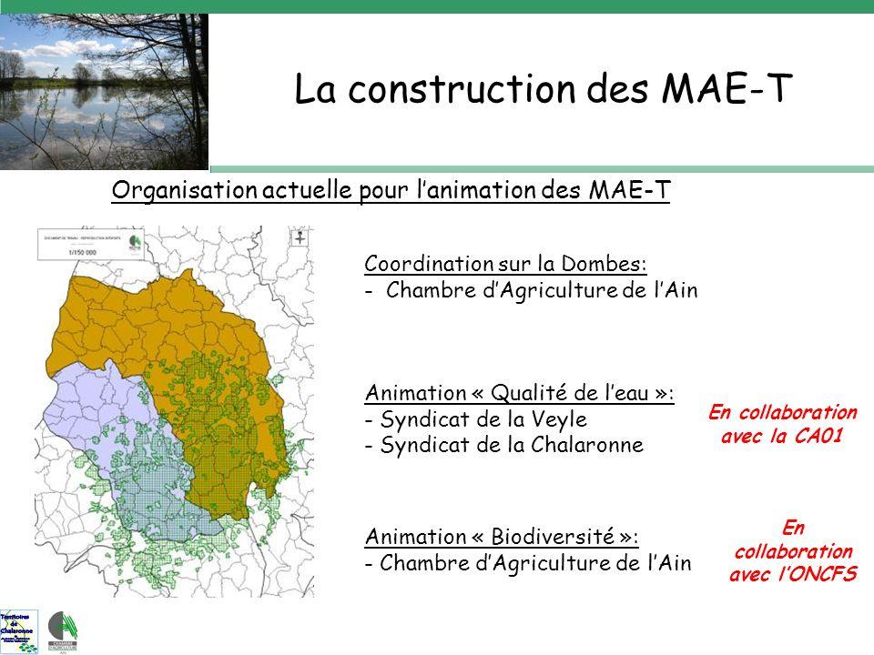 Organisation actuelle pour lanimation des MAE-T Coordination sur la Dombes: - Chambre dAgriculture de lAin En collaboration avec la CA01 En collaboration avec lONCFS Animation « Qualité de leau »: - Syndicat de la Veyle - Syndicat de la Chalaronne Animation « Biodiversité »: - Chambre dAgriculture de lAin