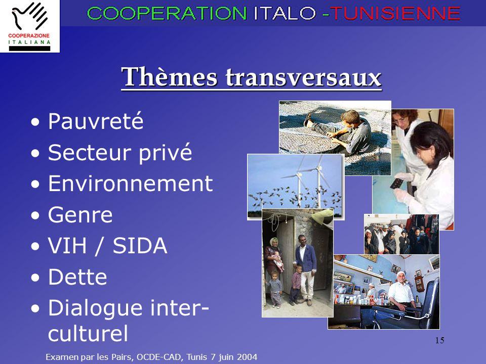 Examen par les Pairs, OCDE-CAD, Tunis 7 juin 2004 15 Thèmes transversaux Pauvreté Secteur privé Environnement Genre VIH / SIDA Dette Dialogue inter- c