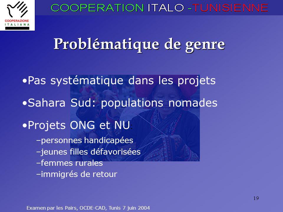 Examen par les Pairs, OCDE-CAD, Tunis 7 juin 2004 19 Problématique de genre Pas systématique dans les projets Sahara Sud: populations nomades Projets