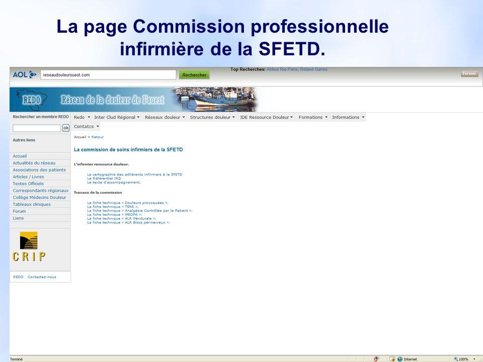 13 La page Commission professionnelle infirmière de la SFETD.