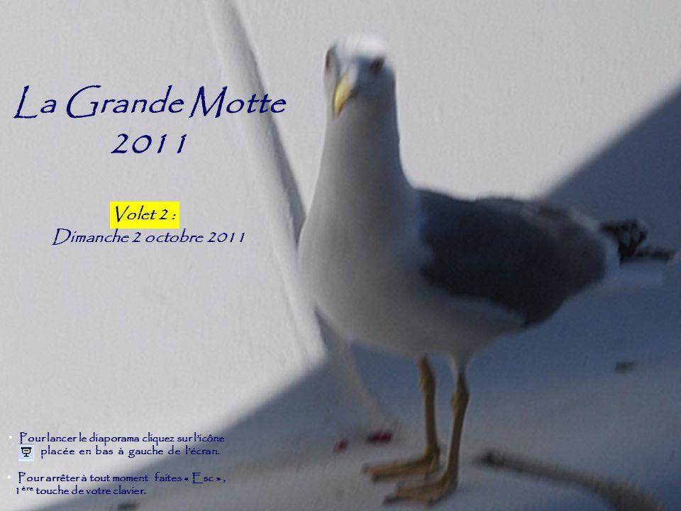 La Grande Motte 2011 Volet 2 Dimanche 2 octobre 2011 Pour arrêter à tout moment faites « Esc », 1 ère touche de votre clavier. Pour lancer le diaporam