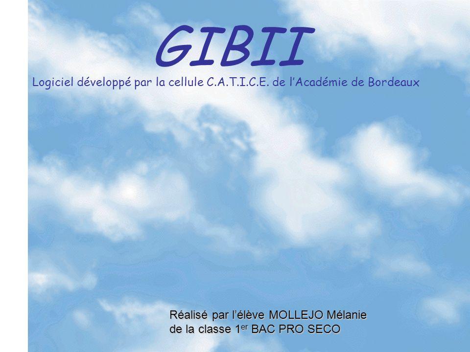GIBII G estion I nformatisée du B revet I nformatique et I nternet Logiciel développé par la cellule C.A.T.I.C.E.