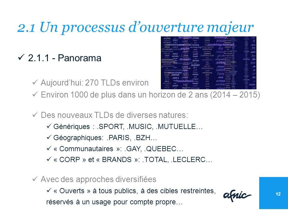 2.1 Un processus douverture majeur 2.1.1 - Panorama Aujourdhui: 270 TLDs environ Environ 1000 de plus dans un horizon de 2 ans (2014 – 2015) Des nouveaux TLDs de diverses natures: Génériques :.SPORT,.MUSIC,.MUTUELLE… Géographiques:.PARIS,.BZH… « Communautaires »:.GAY,.QUEBEC… « CORP » et « BRANDS »:.TOTAL,.LECLERC… Avec des approches diversifiées « Ouverts » à tous publics, à des cibles restreintes, réservés à un usage pour compte propre… 12