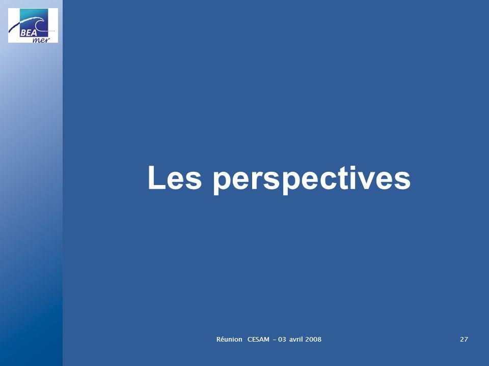 Réunion CESAM - 03 avril 200827 Les perspectives