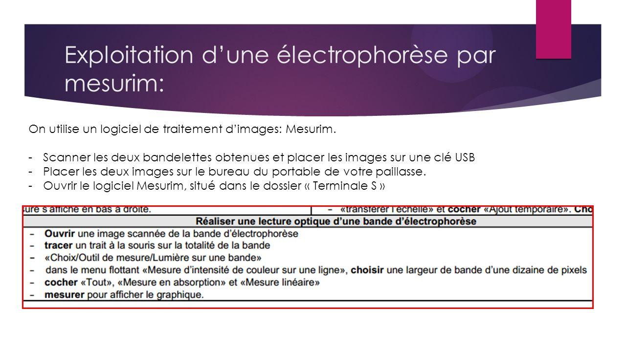 Exploitation dune électrophorèse par mesurim: On utilise un logiciel de traitement dimages: Mesurim.