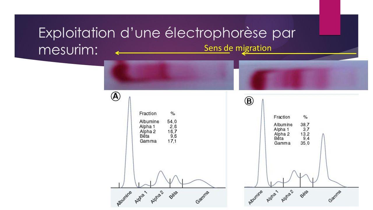 Exploitation dune électrophorèse par mesurim: Sens de migration
