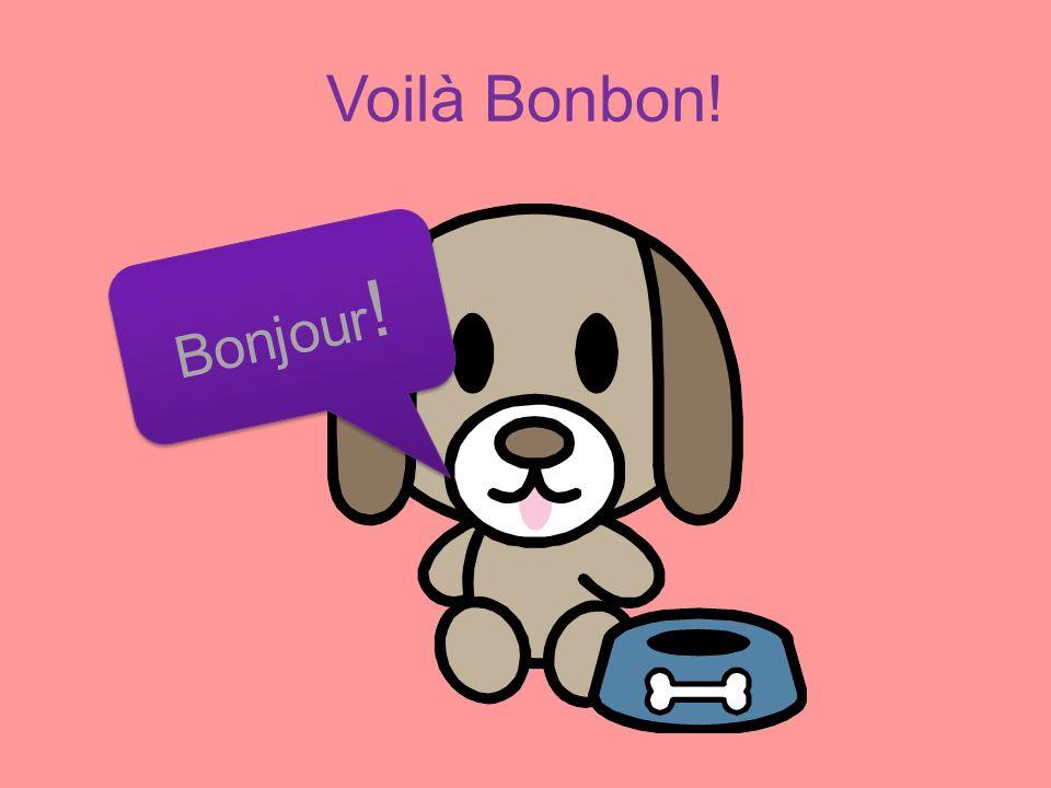 Voilà Bonbon! Bonjour ! B o n j o u r !