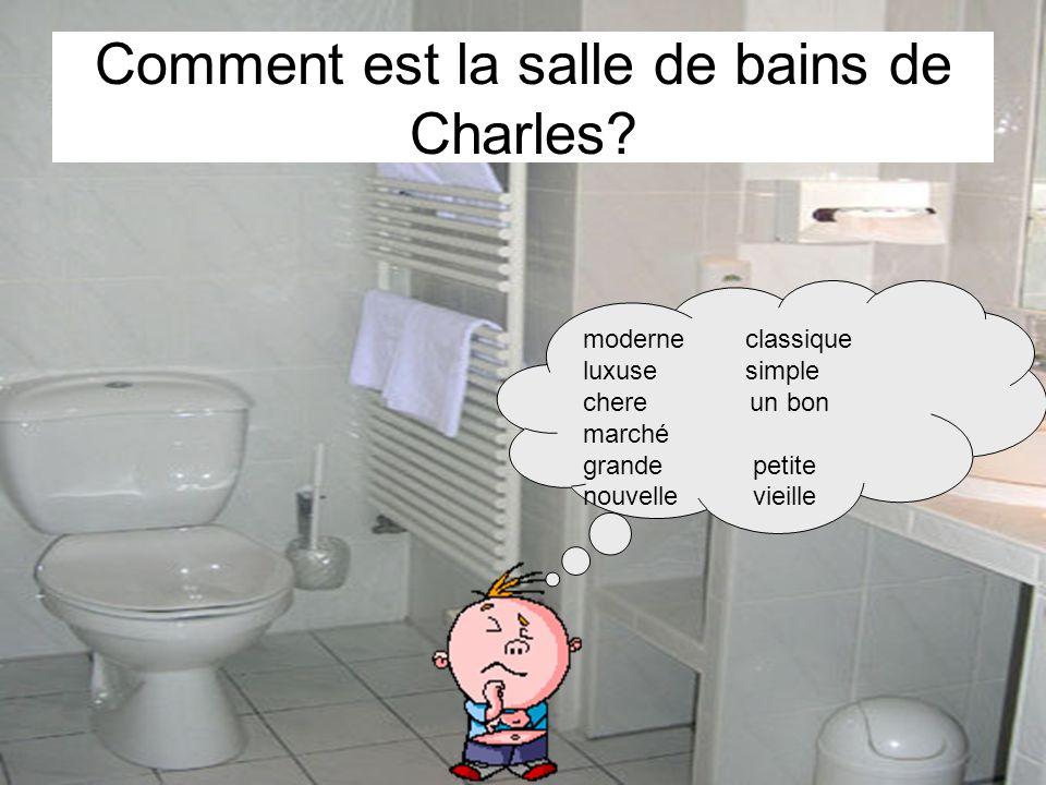 Comment est la salle de bains de Charles? moderne classique luxuse simple chere un bon marché grande petite nouvelle vieille