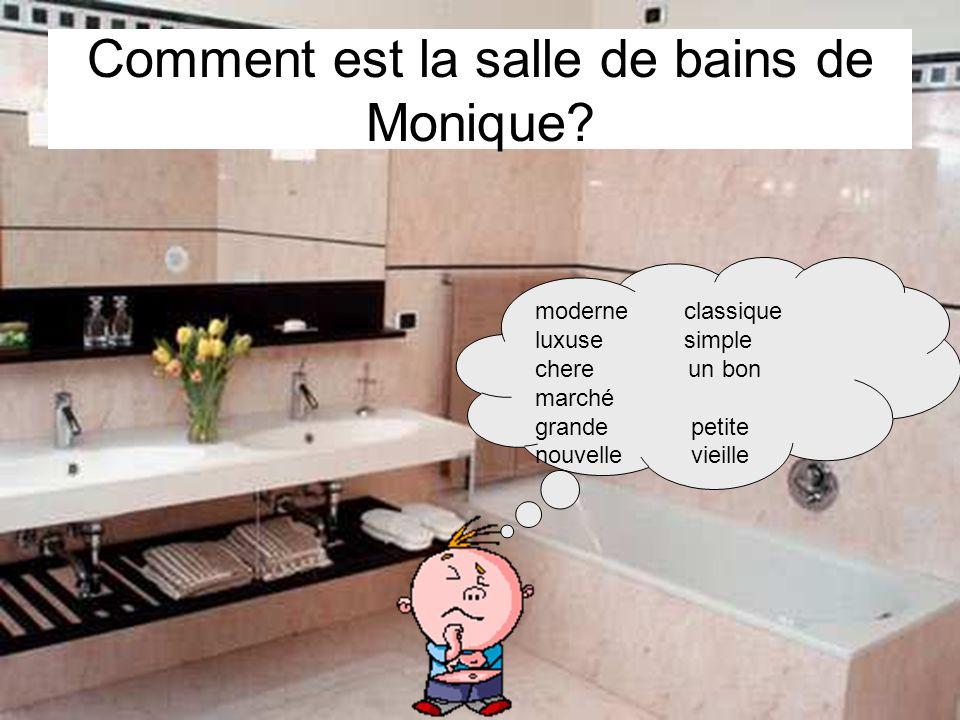 Comment est la salle de bains de Monique? moderne classique luxuse simple chere un bon marché grande petite nouvelle vieille