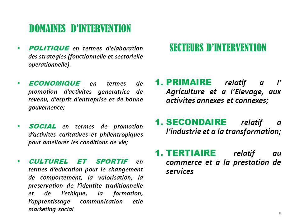 DOMAINES DINTERVENTION POLITIQUE en termes delaboration des strategies (fonctionnelle et sectorielle operationnelle). ECONOMIQUE en termes de promotio