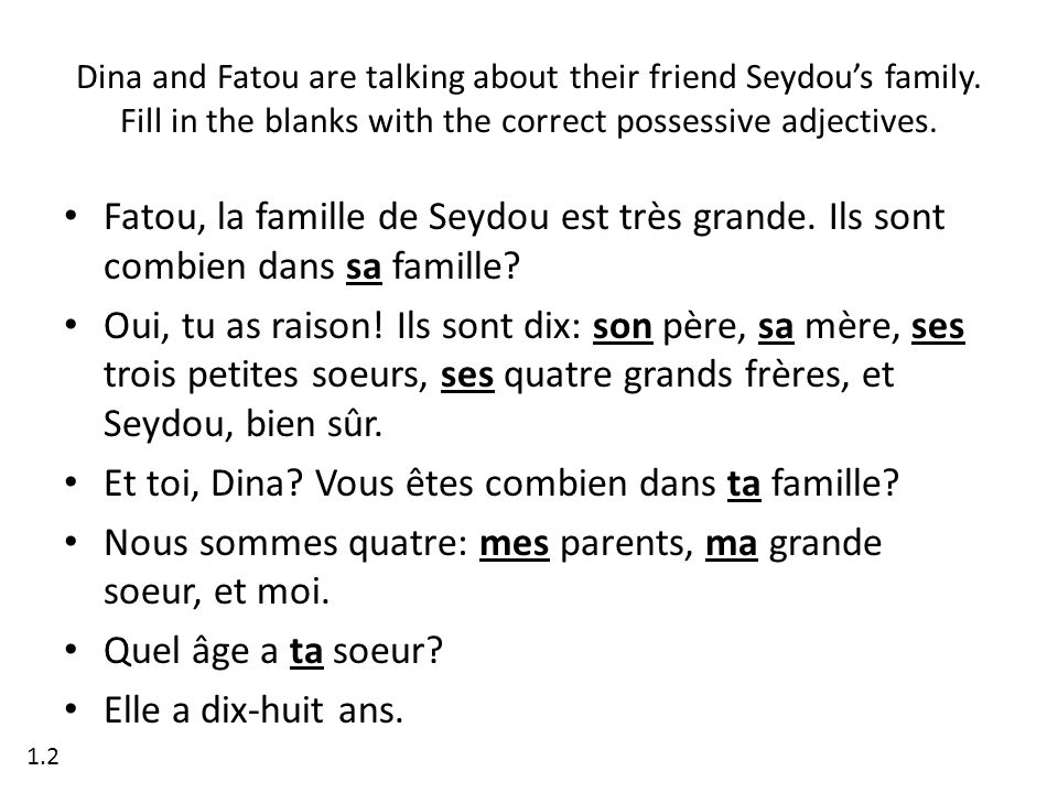 Dina and Fatou are talking about their friend Seydous family. Fill in the blanks with the correct possessive adjectives. Fatou, la famille de Seydou e