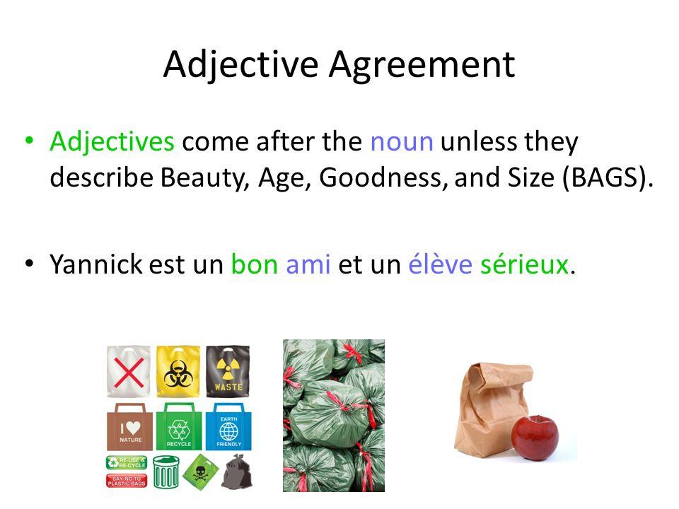 Adjective Agreement Adjectives come after the noun unless they describe Beauty, Age, Goodness, and Size (BAGS). Yannick est un bon ami et un élève sér