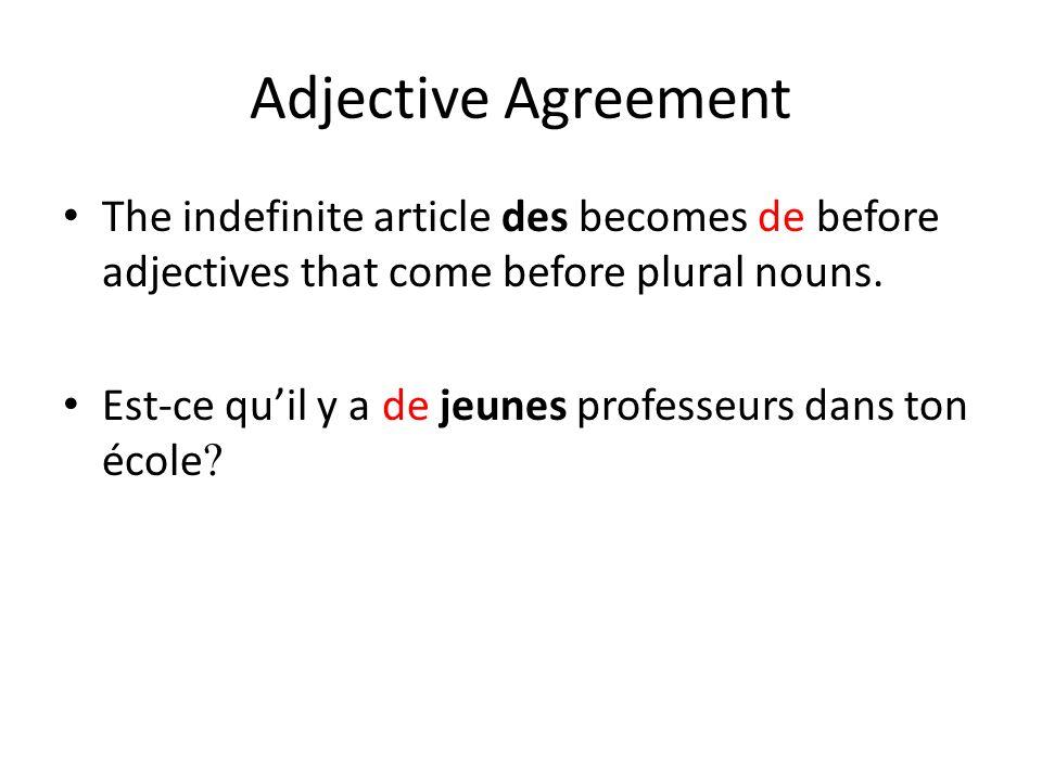 Adjective Agreement The indefinite article des becomes de before adjectives that come before plural nouns. Est-ce quil y a de jeunes professeurs dans