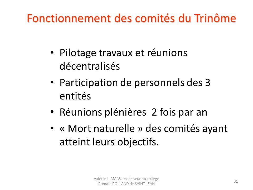 Fonctionnement des comités du Trinôme Pilotage travaux et réunions décentralisés Participation de personnels des 3 entités Réunions plénières 2 fois p