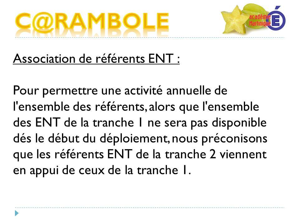 Association de référents ENT : Pour permettre une activité annuelle de l'ensemble des référents, alors que l'ensemble des ENT de la tranche 1 ne sera