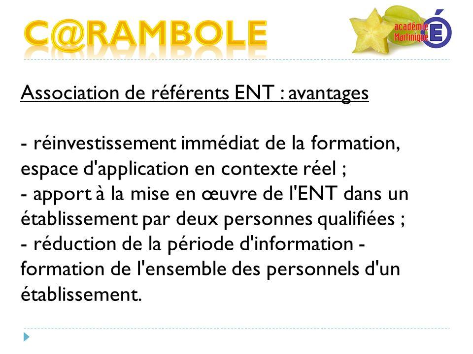 Association de référents ENT : avantages - réinvestissement immédiat de la formation, espace d'application en contexte réel ; - apport à la mise en œu