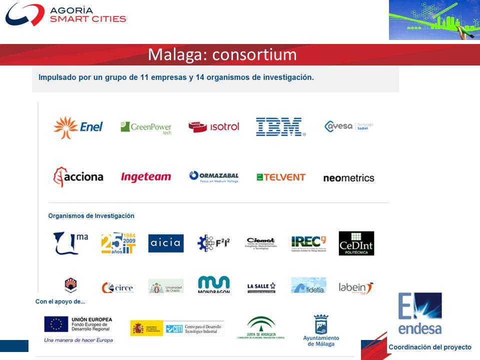 Malaga: consortium