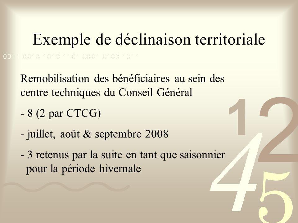 Exemple de déclinaison territoriale Remobilisation des bénéficiaires au sein des centre techniques du Conseil Général - 8 (2 par CTCG) - juillet, août & septembre 2008 - 3 retenus par la suite en tant que saisonnier pour la période hivernale