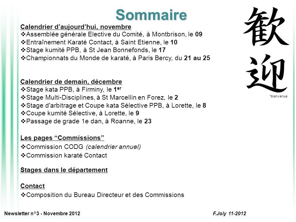 Calendrier daujourdhui, novembre L Assemblée Générale Élective du Comité s est déroulée le 9 novembre.
