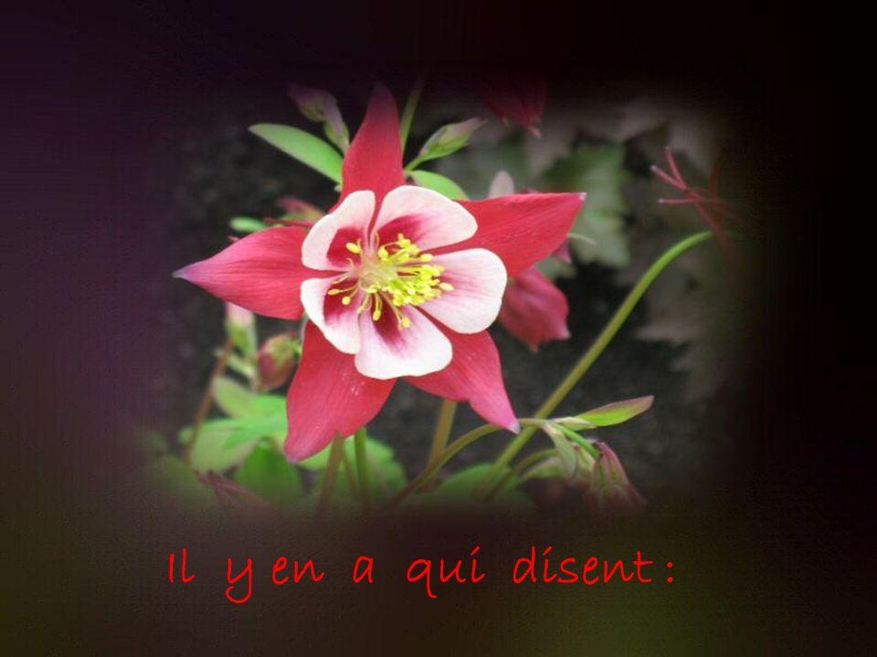 Dit avec des fleurs !