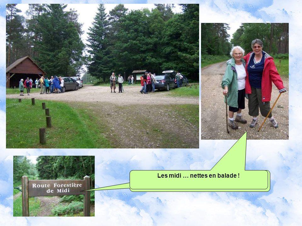 Le panneau du rond de Beuvron par l Office National des Forêts Où quy va encore nous faire crapahuter !