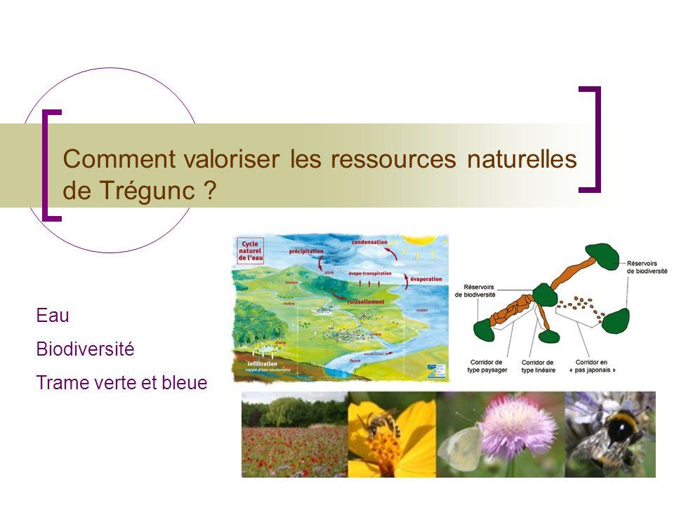 Comment valoriser les ressources naturelles de Trégunc ? Eau Biodiversité Trame verte et bleue